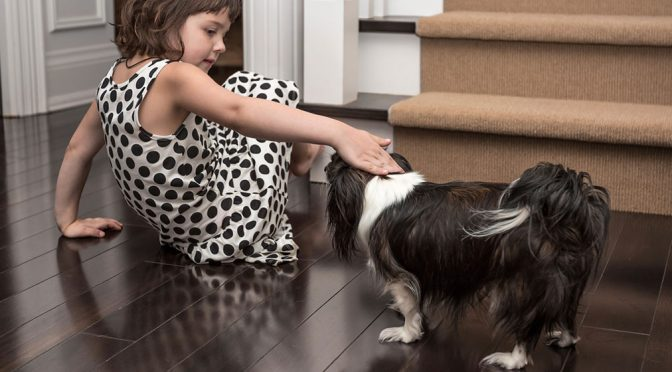 What's the Best Trim and Stair Paint for Dog Owners?