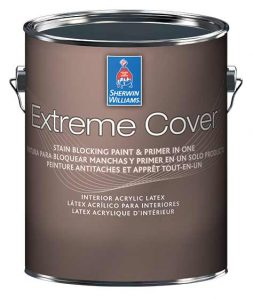 extreme cover stain blocking paint