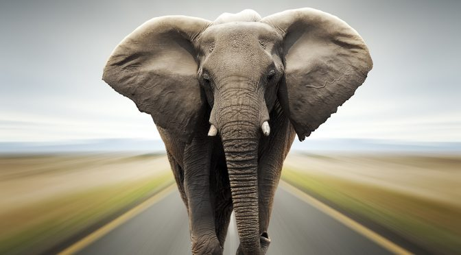 7 Steps for Solving Business Problems, or Learning How to Eat an Elephant