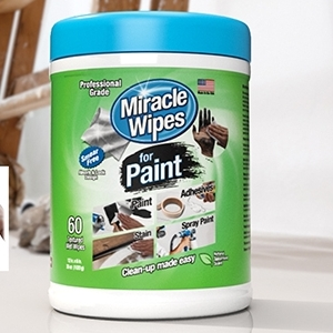 Fall 2019 advertorial image - MiracleWipes for Paint